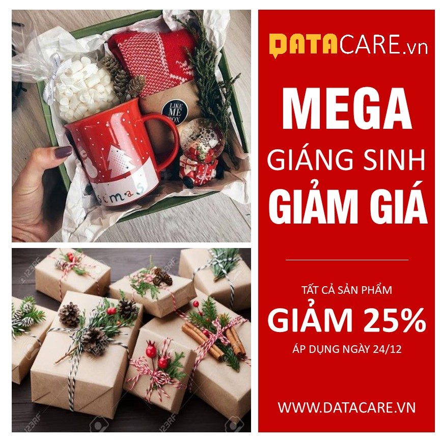 Banner Giáng Sinh – TR0112202026